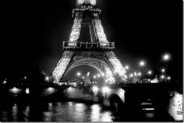 Eiffel Tower and the Seine.michellepalmer